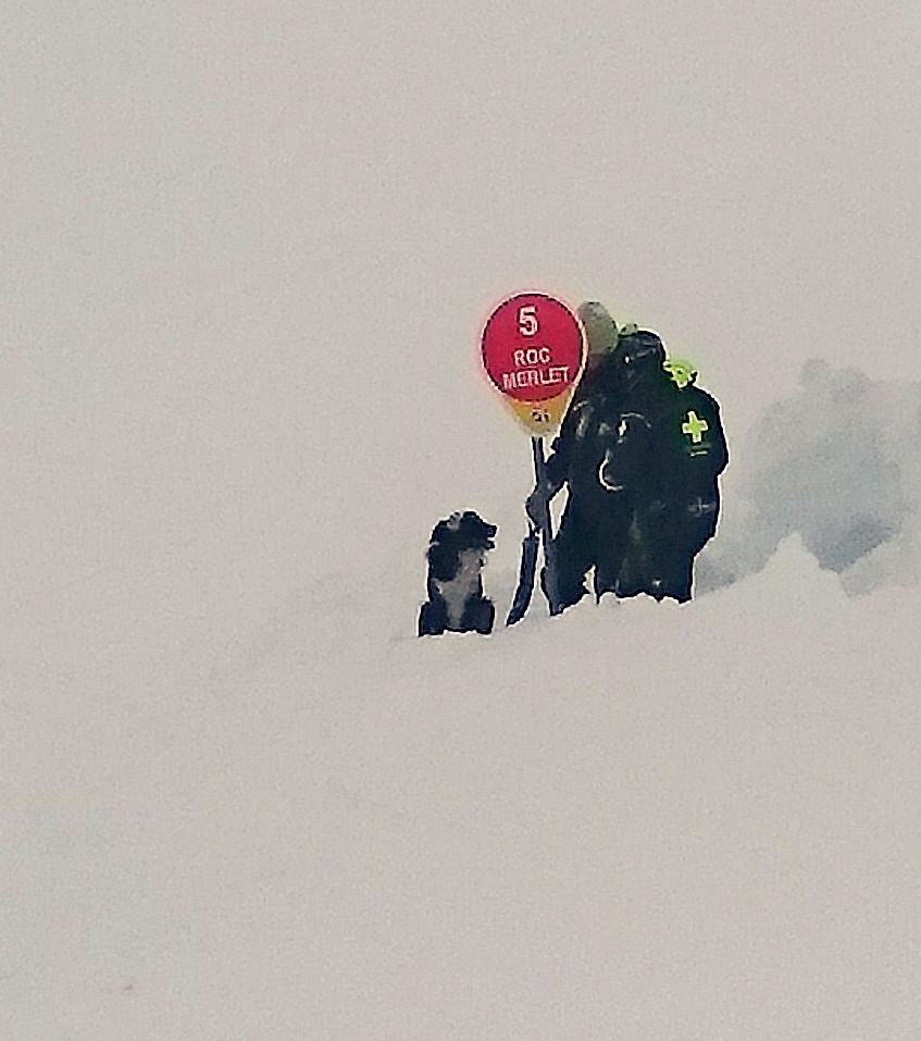 avalanche dog.JPG