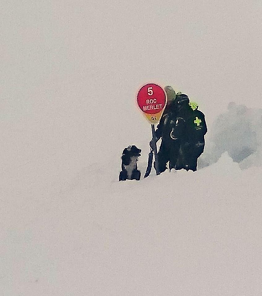 avalanche dog.JPG