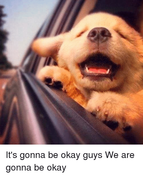 its-gonna-be-okay-guys-we-are-gonna-be-okay-3438839.png